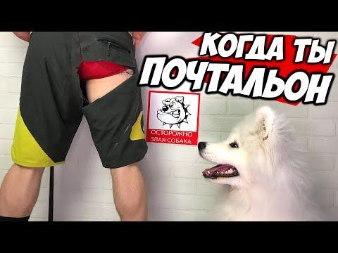 БЕННЕТ ФОДДИ Меняет Профессию