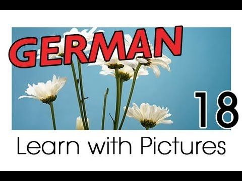 Learn German – German Plants Vocabulary
