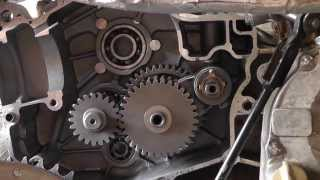 4. how to fix a Cf Moto 250cc hammerhead gear box assembly