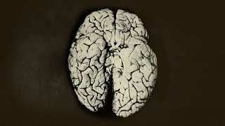 A Scientist Spilled 2 Drops Organic Mercury On Her Hand. This Is What Happened To Her Brain.