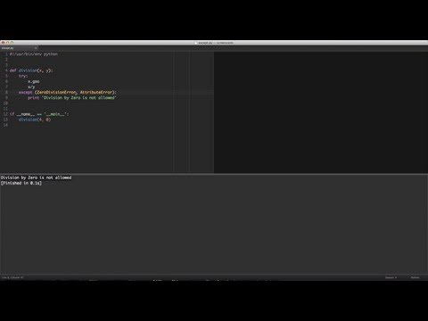 Python Exceptions Explained in Detail