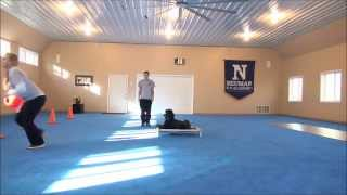 Frida (Standard Poodle) Dog Training Video Minneapolis