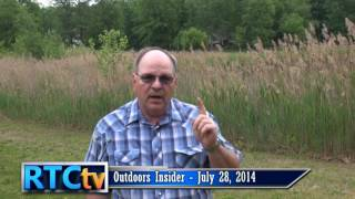 Outdoors Insider- Invasive Species