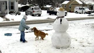 Snowman Time Lapse 2010