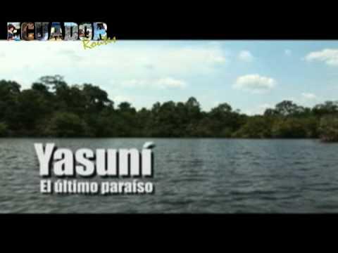 yasuni - Yasuni - El ultimo paraiso ... Video Cortesía - Dirección de Turismo del Gobierno Municipal Francisco de Orellana.