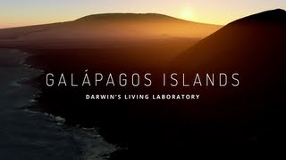 Video Explore the Galapagos Islands with Google Maps MP3, 3GP, MP4, WEBM, AVI, FLV Oktober 2018