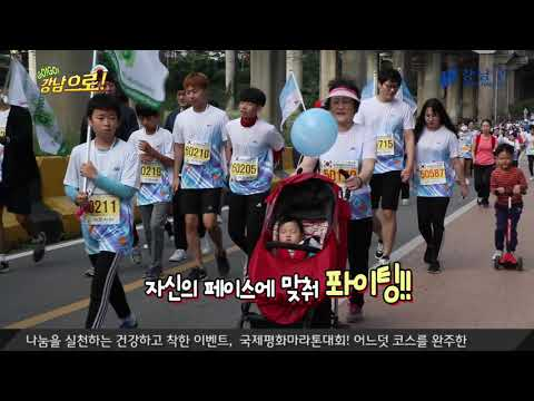 고고강남으로- 국제평화마라톤대회&글로벌명장쉐프음식축제