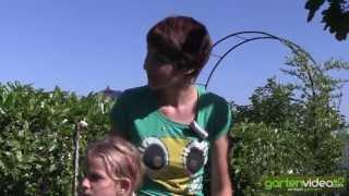 #1329 Die Gemüse-Hochbeete von Sabine Reber
