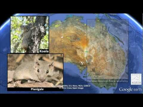 Google Earth Outreach Helps Australian and New Zealand Conservation Efforts