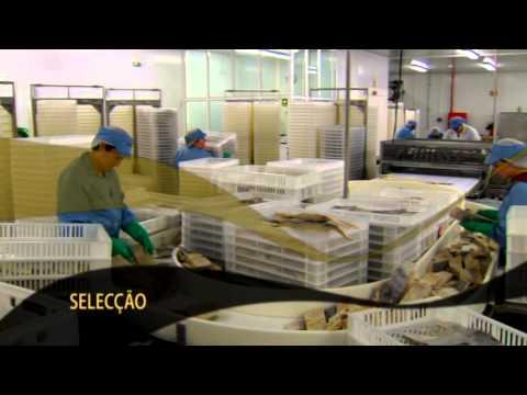 Portugal | Sr. Bacalhau