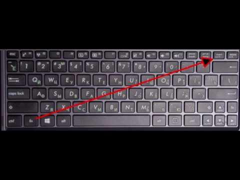 ноутбук цыфры не печатываются оригинальный полисы