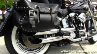 1995 harley davidson softail service manual