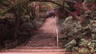 美しき日本 奈良 宇陀市 室生寺
