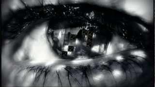 P!NK Ft. Nate Ruess -