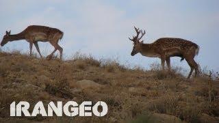 Iran | Kurdistan | Landscapes&Nature