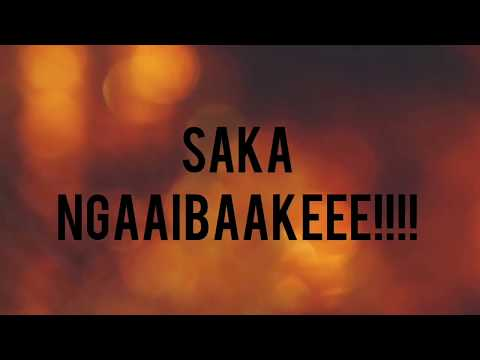Ngaibake - Freeman ft Aleck Macheso lyric Video