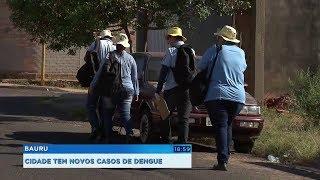 Bauru: força-tarefa elimina criadouros do mosquito da dengue no Parque Jaraguá