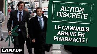 Le cannabis arrive en pharmacie