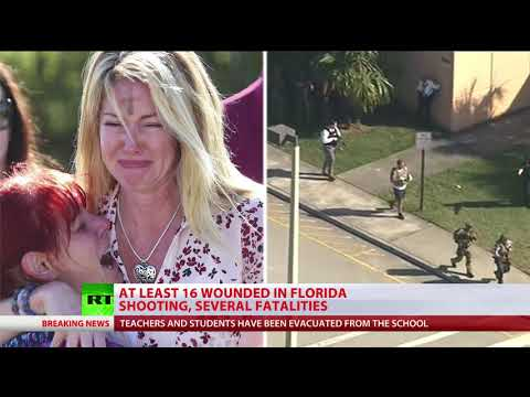 Mass shooting in Florida school leaves 17 dead