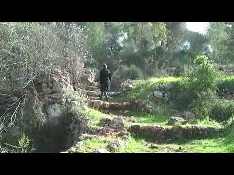 VIDEO -  Ein Kerem in 60 Seconds