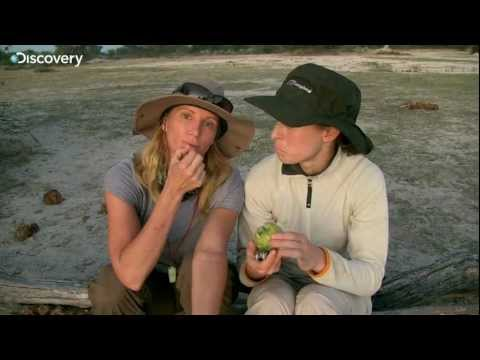 Alone in the Wild - Tanya & Amy's fruit find (видео)