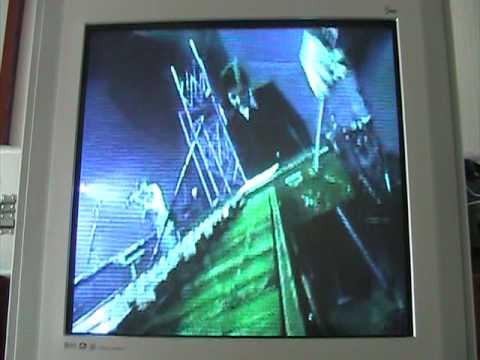 Video de Tiki Fiesta de Plastilina Mosh