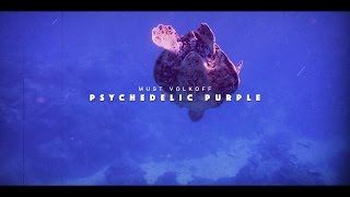 MUST VOLKOFF FT. SONNYJIM - Psychedelic Purple (VIDEO)