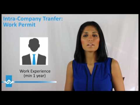Intra Company Transferee Work Permit Video