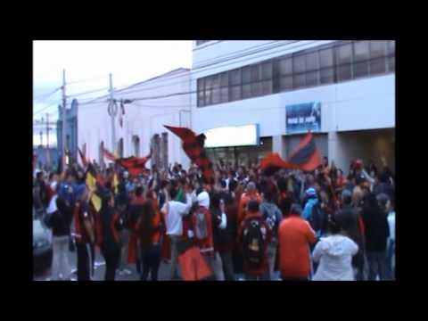 Los Rojinegros-Rangers de Talca 2013 - Los Rojinegros - Rangers de Talca
