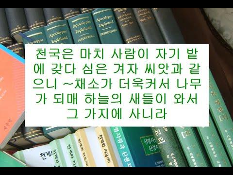 마태복음영해설교13장31-35절