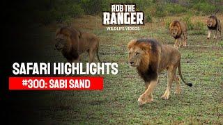 Video Idube Safari Highlights #300: 24 - 27 October 2014 (Latest Sightings) (4K Video) #youtubeZA MP3, 3GP, MP4, WEBM, AVI, FLV Mei 2017