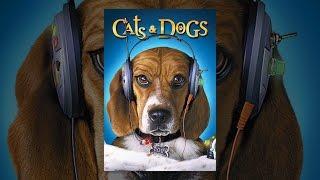 Video Cats & Dogs MP3, 3GP, MP4, WEBM, AVI, FLV Februari 2018