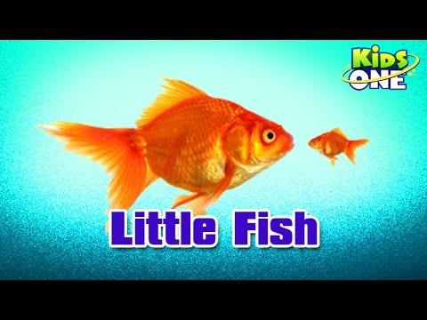 Telugu movie videos telugu cinema videos telugu movie for Little fish song
