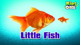 Video Little Fish || Hindi Animated Stories || Kids Animated Stories - KidsOne MP3, 3GP, MP4, WEBM, AVI, FLV Juni 2018