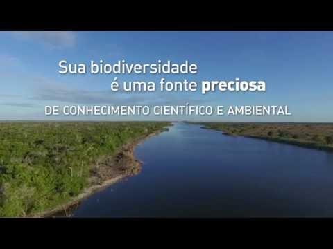 4 anos de RPPN Fazenda Caruara