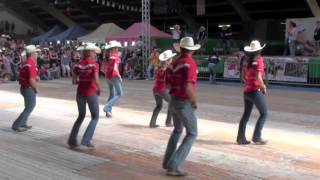 Video Fast As A Shark line dance - WILD COUNTRY - Voghera Country Festival 2012 MP3, 3GP, MP4, WEBM, AVI, FLV Juni 2018