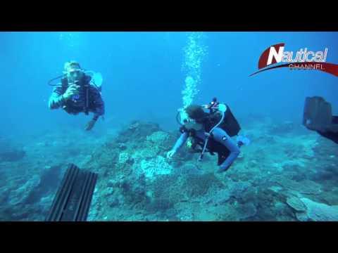 Teaser - Ocean Safari: Season Finale