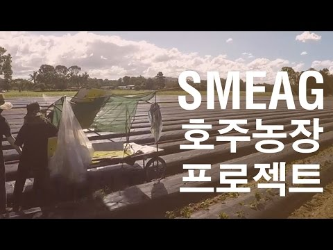 [필리핀 어학연수] SMEAG 어학원 : 호주 농장 연계 프로그램