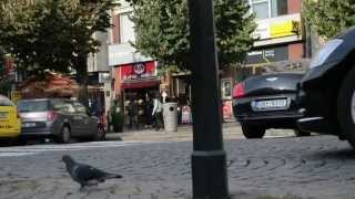 Video STREETS of PRAGUE