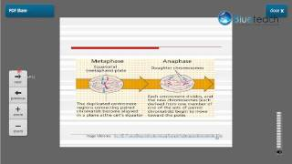 Detailed Class on Mitosis, its functions in a cell and stages by Anna Purna. This 19 minute class describes the process of Mitosis, ...