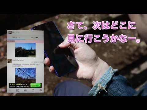 Video of 桜ったー。:2014年版 桜の開花情報共有アプリ。お花見に。