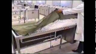Arterial Embalming For Teaching Purposes 2 Of 2