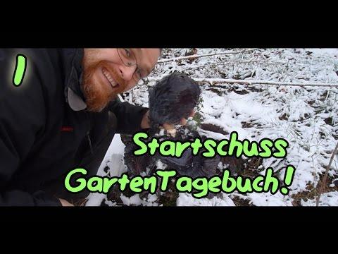 Gartentagebuch (Teil1): Erster Rundgang und Rotkohlernte