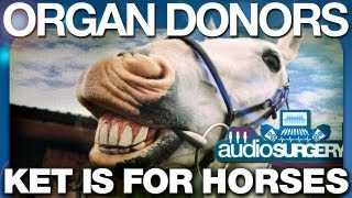Organ Donors - Ket Is For Horses (ORIGINAL VIDEO) HD
