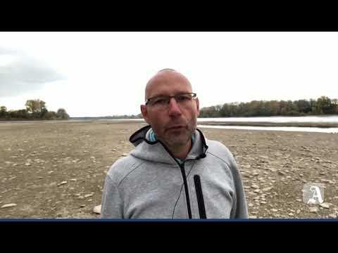 Niedrigwasser in Mainz - im Winterhafen liegt alles s ...