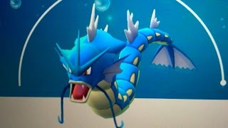 "Pokemon GO rare Pokemon Magikarp to evolve Gyarados quest back at RIO!!  Follow Kaden in his search for 180 Magikarp candies!!  Watch to see all the other rare Pokemon he captures.Please give up a ""thumbs up"" if you like our video.  If there are any challenge you want to see Kaden & Kiana do, please leave a comment below.  For more challenge videos, please subscribe to our channel!Thanks so much for watching!Music: Breaktime by Kevin MaCleod"