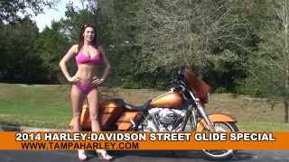 8. New 2014 Harley Davidson Street Glide Special Motorcycle for sale - Palm Harbor