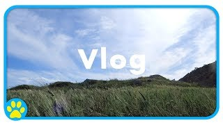 A Week (ish) With Me & The Pets | Vlog by ErinsAnimals