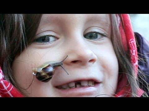 """Kleine Schnecke """"Prinzessin auf der Erbse"""" unterwegs auf meinem Gesicht. Lustige Tiere Kinder Videos"""