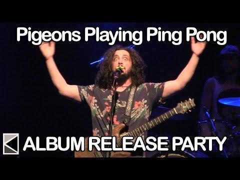 Pigeons Playing Ping Pong - \